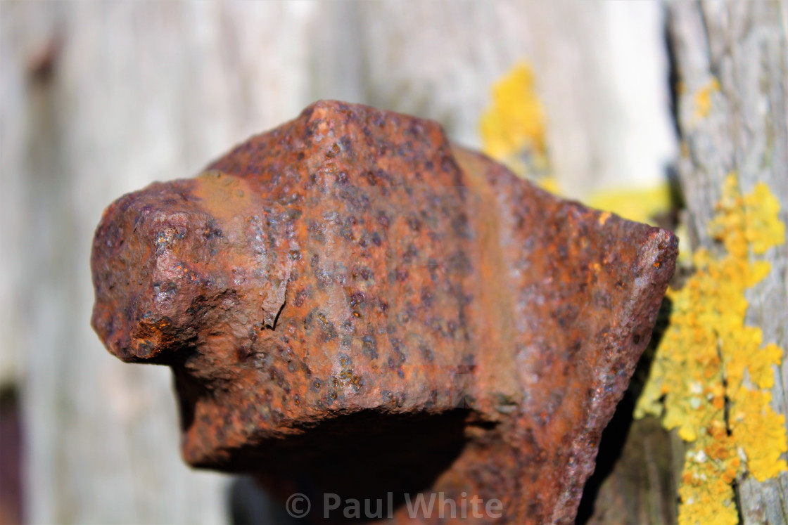 """Rusty Bolt"" stock image"