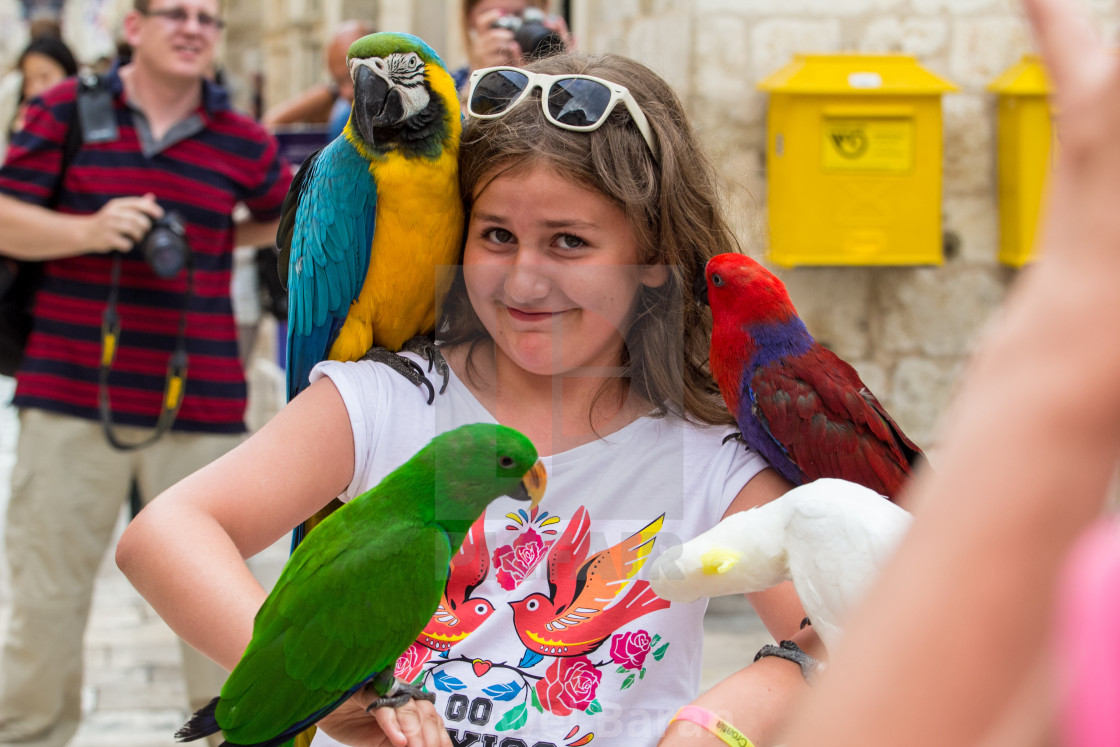 """""""The girl and the parrots"""" stock image"""