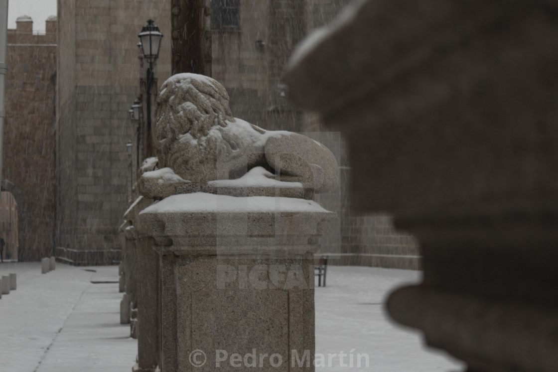 """Stone lion sculpture at the cathedral of Avila"" stock image"