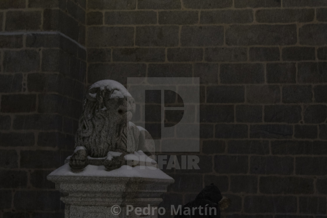 """""""Stone lion sculpture at the cathedral of Avila"""" stock image"""