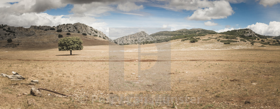 """""""Scenic landscape at Puerto del Viento, mountains of Serrania de Ronda, Andalusia, Spain."""" stock image"""