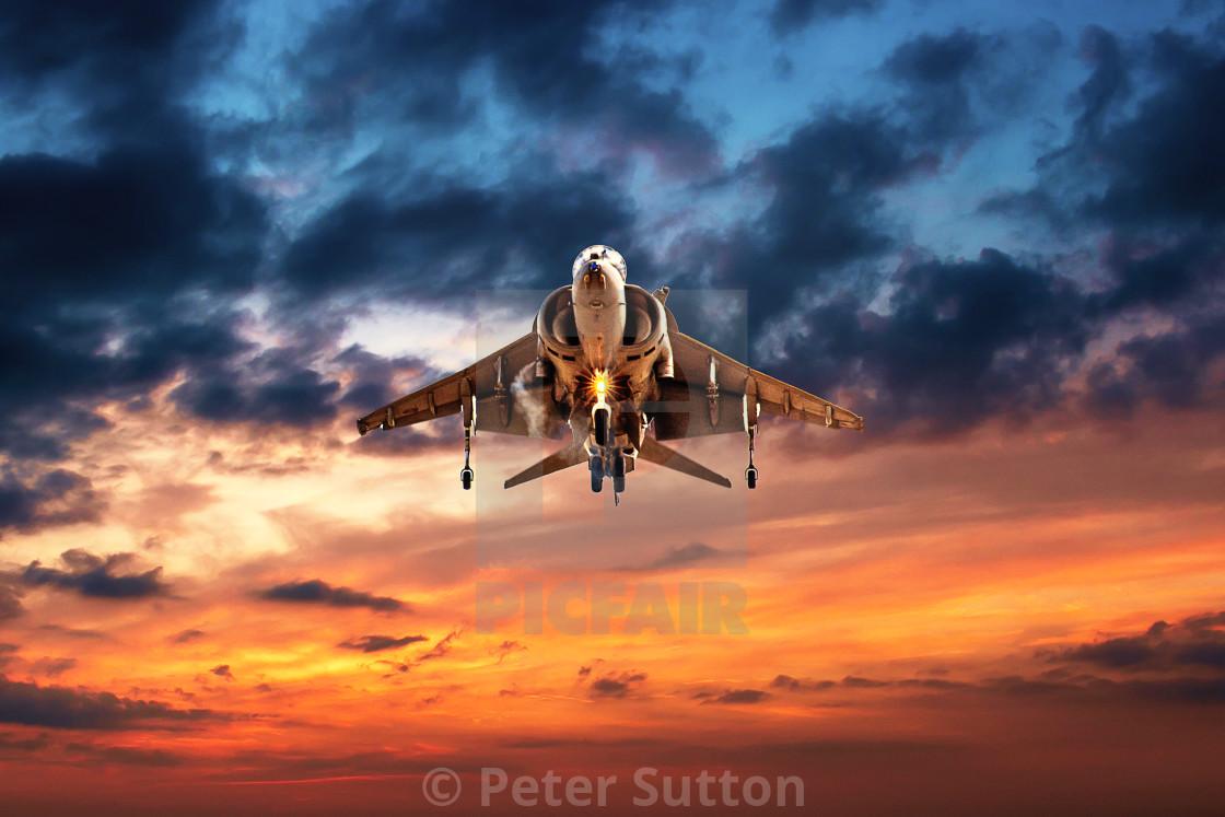 """""""Harrier"""" stock image"""