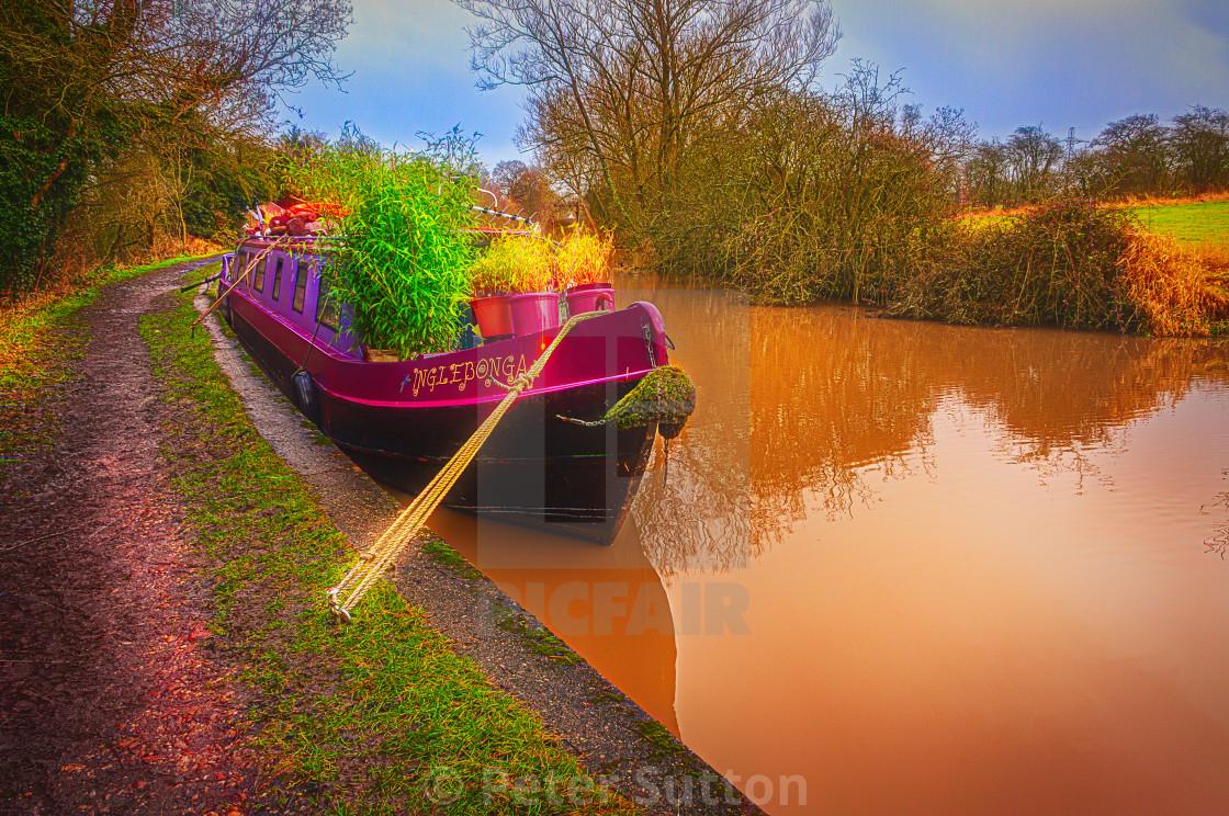"""""""Botany Boat"""" stock image"""