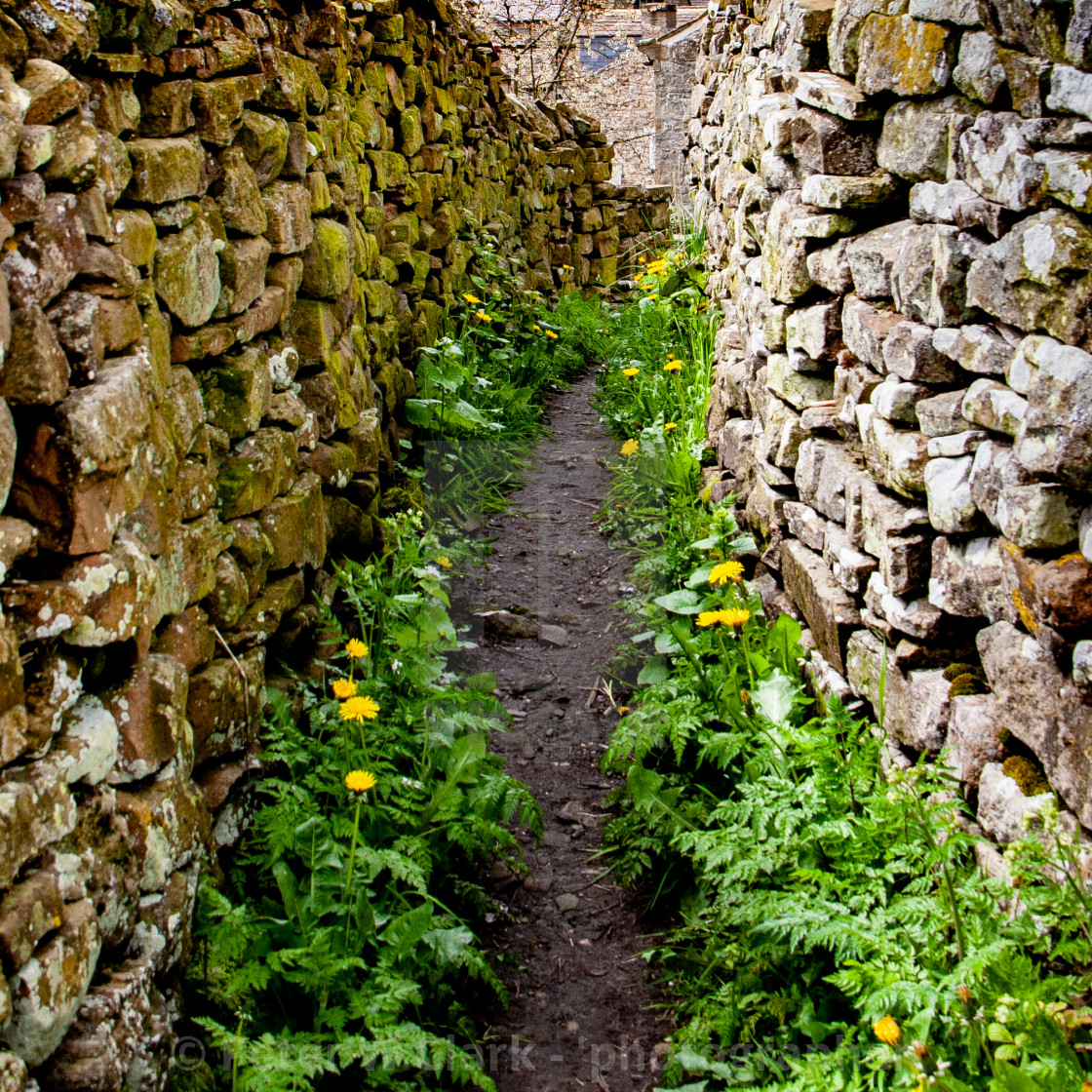 """""""Snicket in Reeth, Swaledale."""" stock image"""
