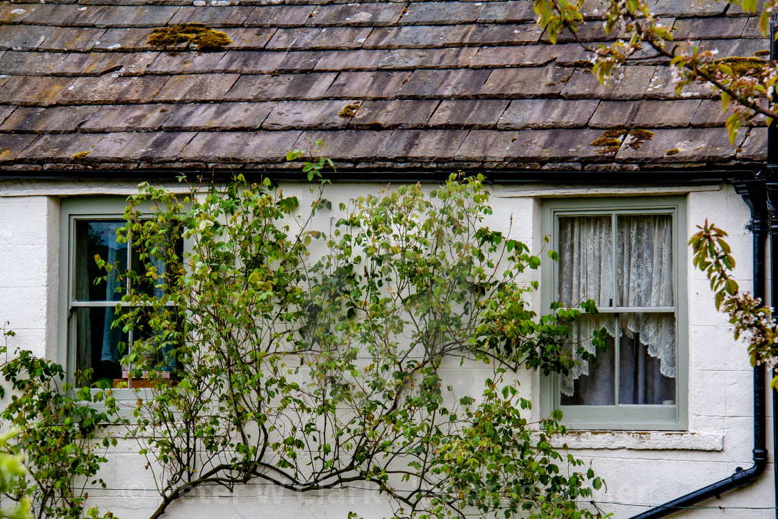 """Swaledale Cottage Elevation/Wall"" stock image"