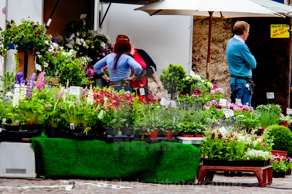 """Cobbled Market Place, market stall displaying and selling flowers and plants. Richmond, North Yorkshire."" stock image"