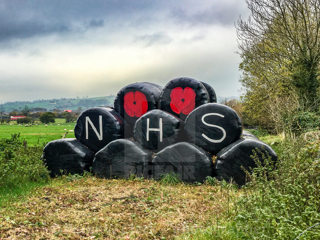 """Poppy Motif and NHS Logo on Plastic Covered Hay Bales."" stock image"