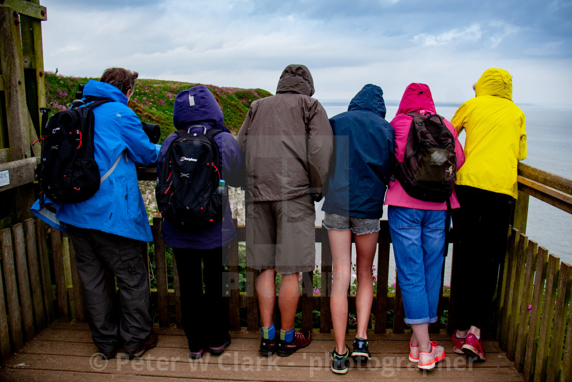 """Bird Watchers at Bempton Cliffs Viewing Point, Yorkshire, England."" stock image"