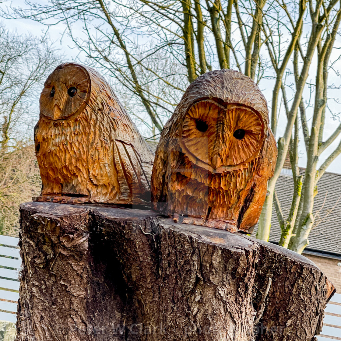 """Two Carved Owls from Tree Stump, Memorial Garden, Silsden (Cobbydale) Yorkshire, England."" stock image"