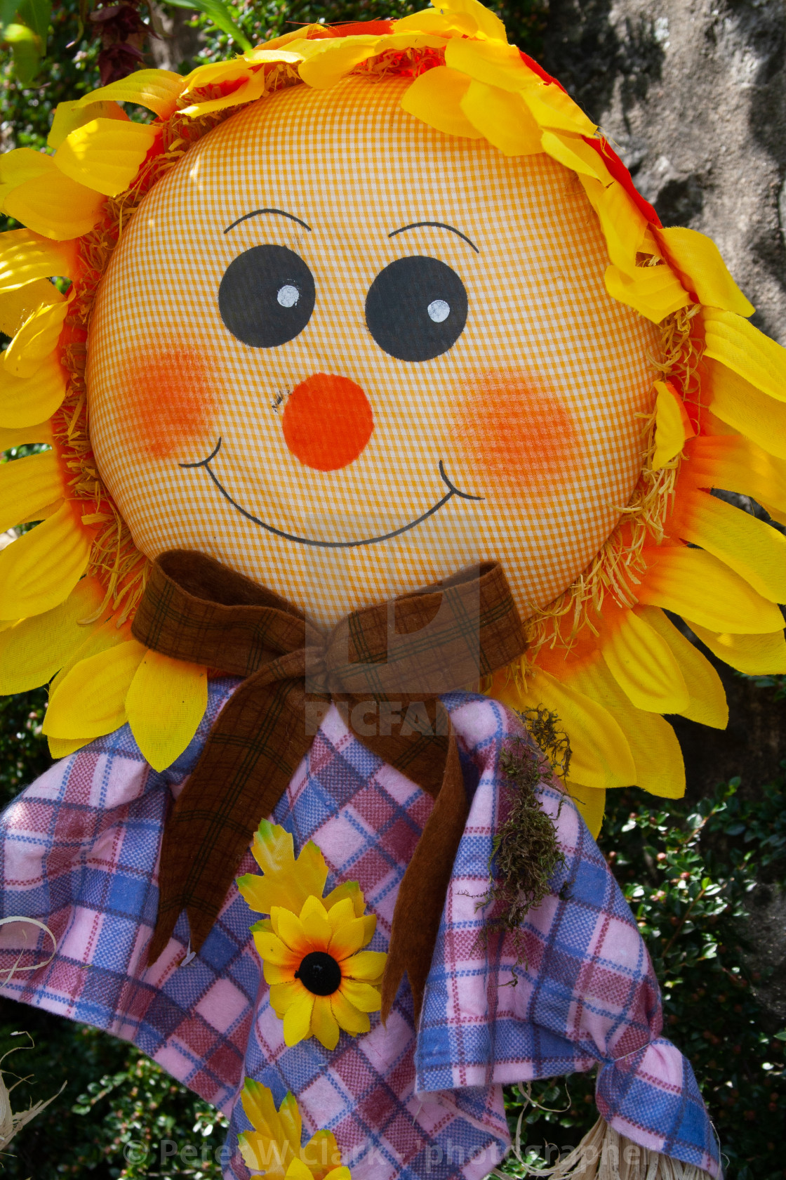 """Kettlewell Scarecrow Festival and Trail, Sunflower. Yorkshire Dales, England."" stock image"