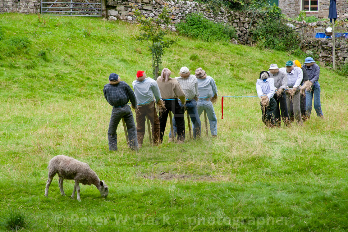 """Kettlewell Scarecrow Festival and Trail, Tug of War. Yorkshire Dales, England."" stock image"