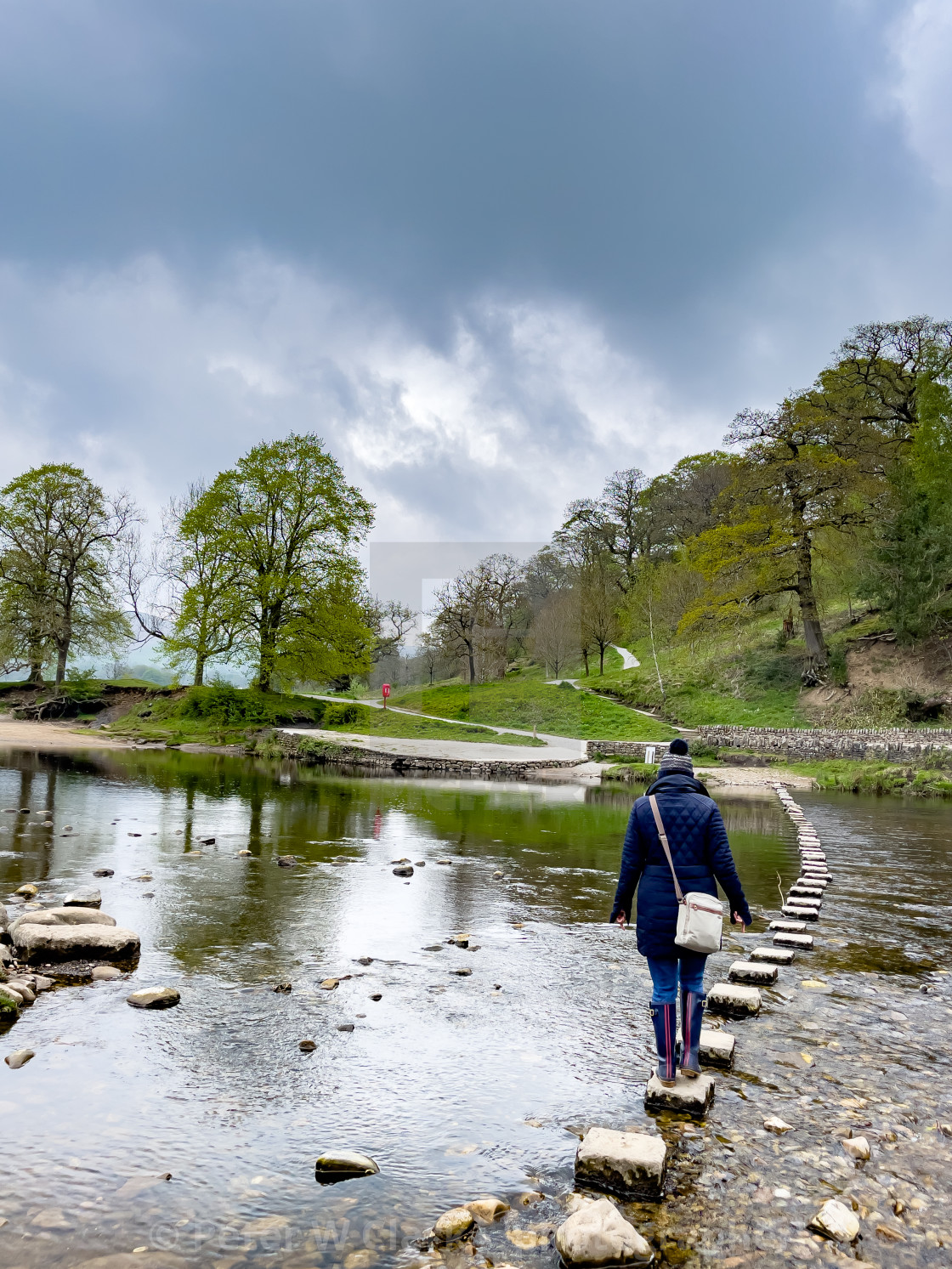 """""""River Wharfe Stepping Stones with Person Crossing at Bolton Abbey, Yorkshire Dales."""" stock image"""