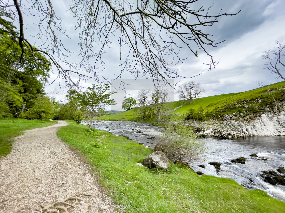"""""""Dalesway Footpath near River Wharfe at Loup Scar near Burnsall in the Yorkshire Dales."""" stock image"""
