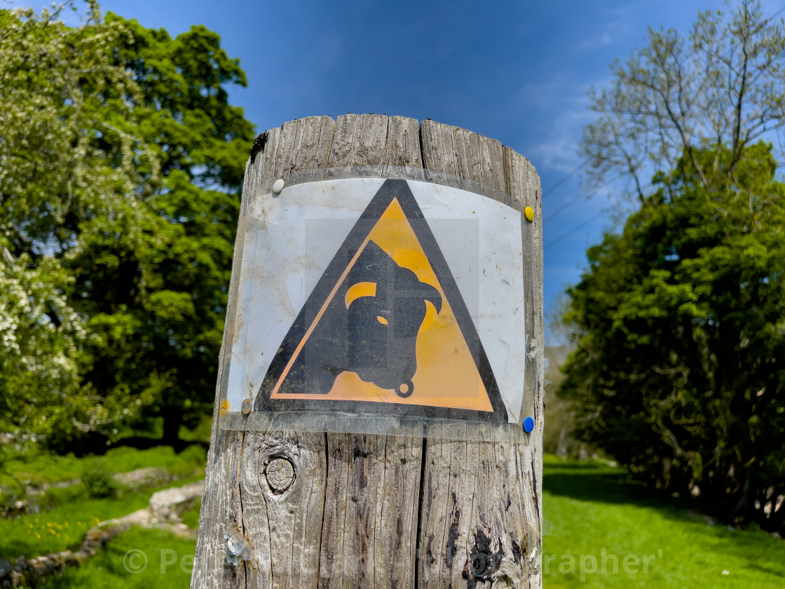 """""""Beware of the Bull, Warning Triangle Sign in Reeth field, Swaledale,"""" stock image"""