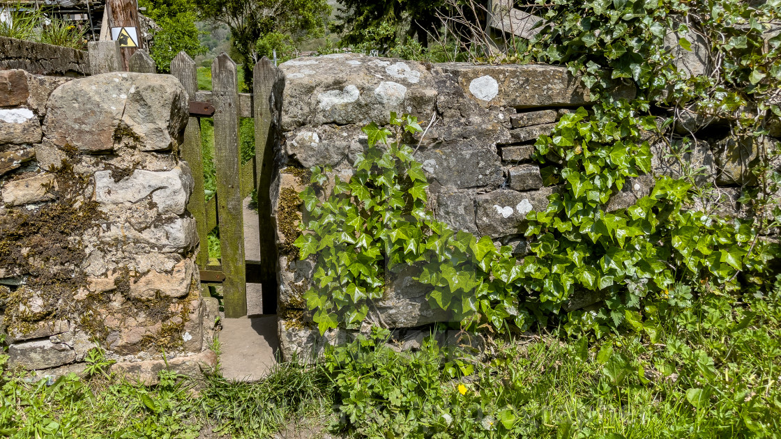 """""""Public Footpath Stile in Stone Wall, Reeth, Swaledale."""" stock image"""