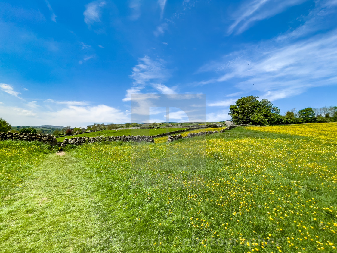 """""""Swaledale Wild Flower Meadow and Footpath near Reeth."""" stock image"""