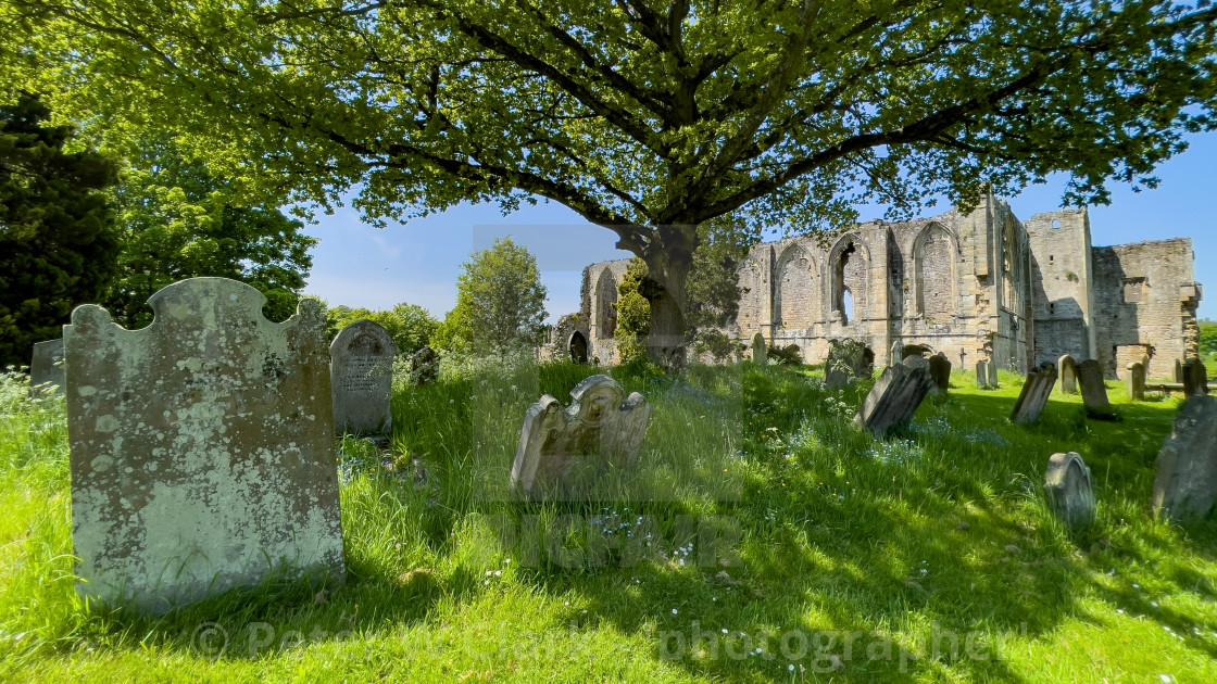 Easby Abbey, Richmond, Historic Ruin.