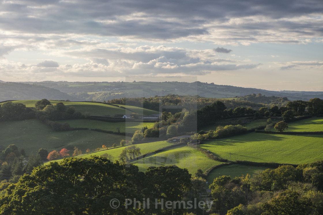 """Haldon Hill"" stock image"