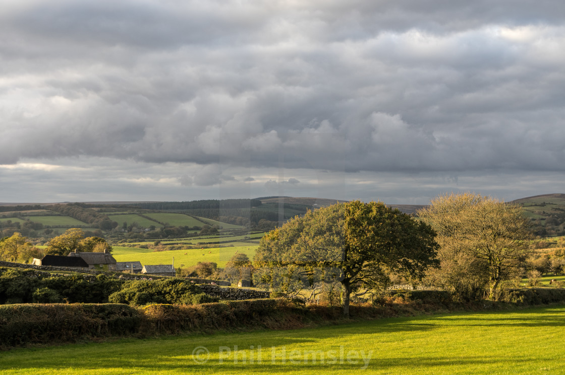 """West Webburn valley - Dartmoor"" stock image"