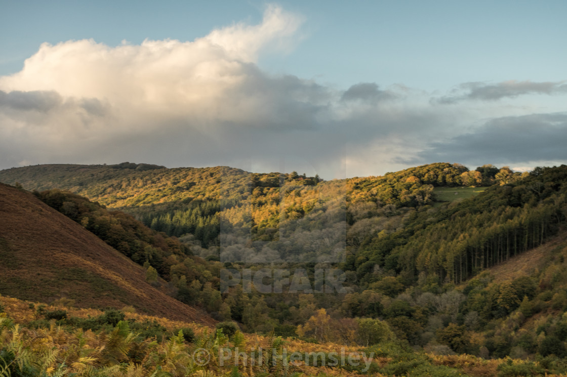 """Lustleigh Cleave - Autumn"" stock image"