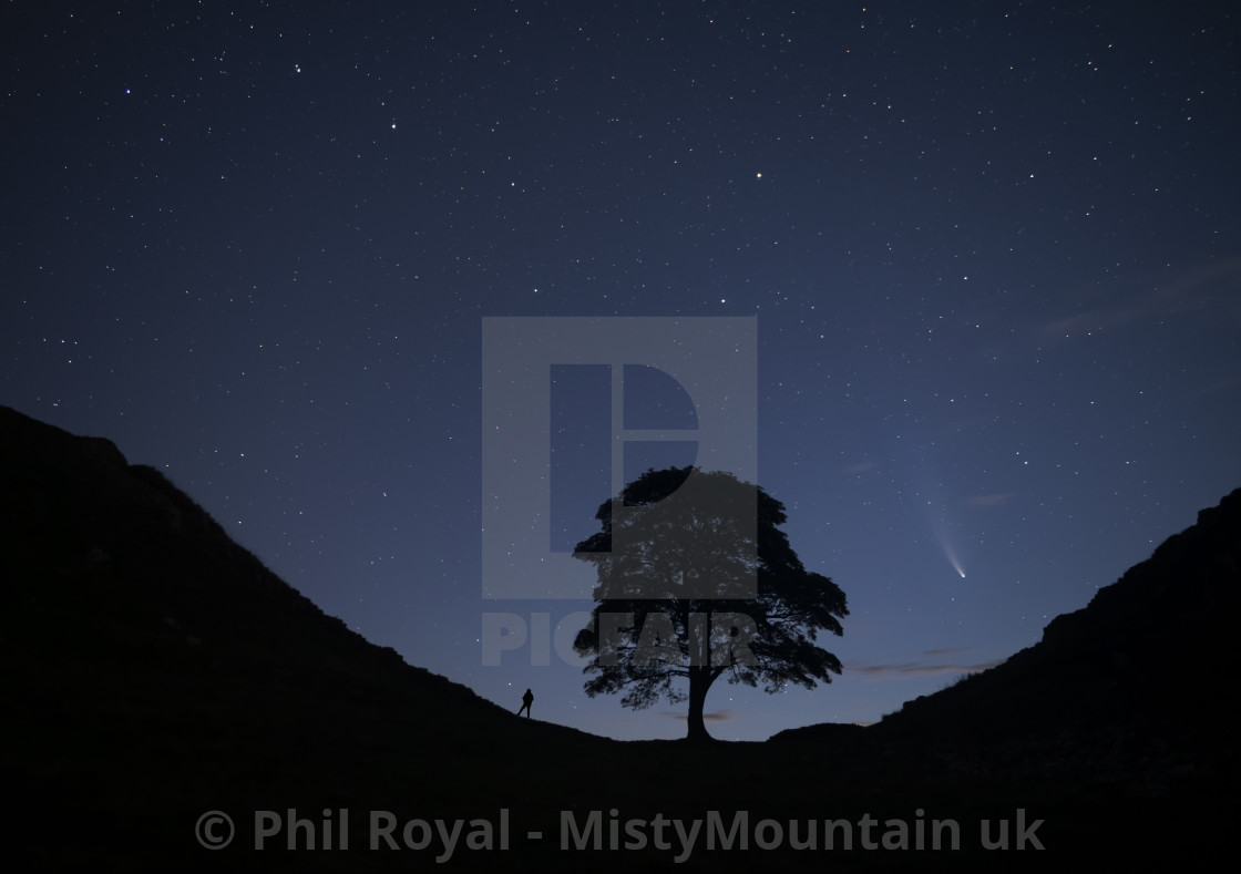 """Watching Neowise at Sycamore Gap"" stock image"