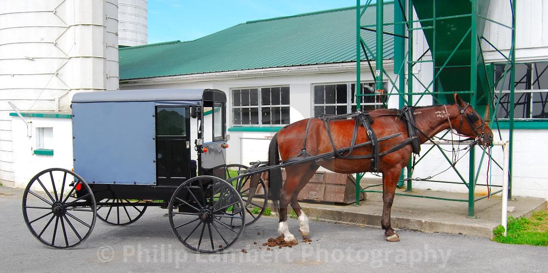 """""""Amish Horse & Buggy"""" stock image"""
