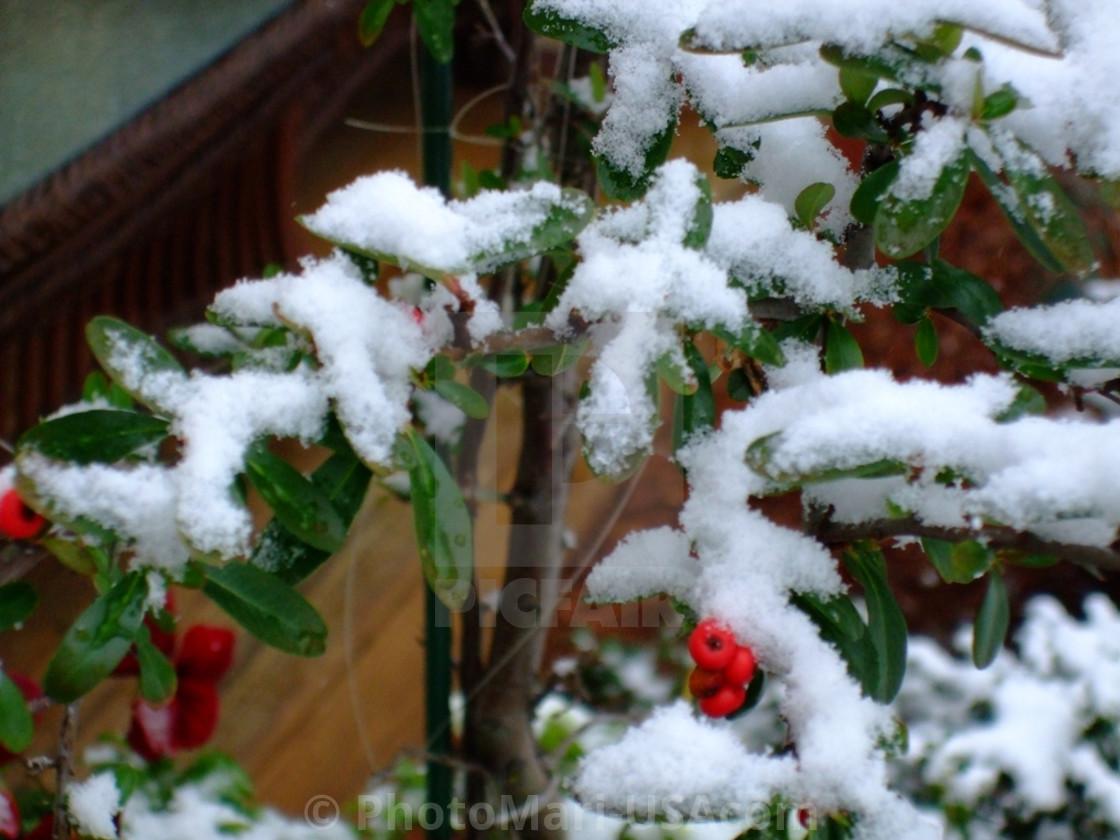 """""""Snow In Atlanta"""" stock image"""