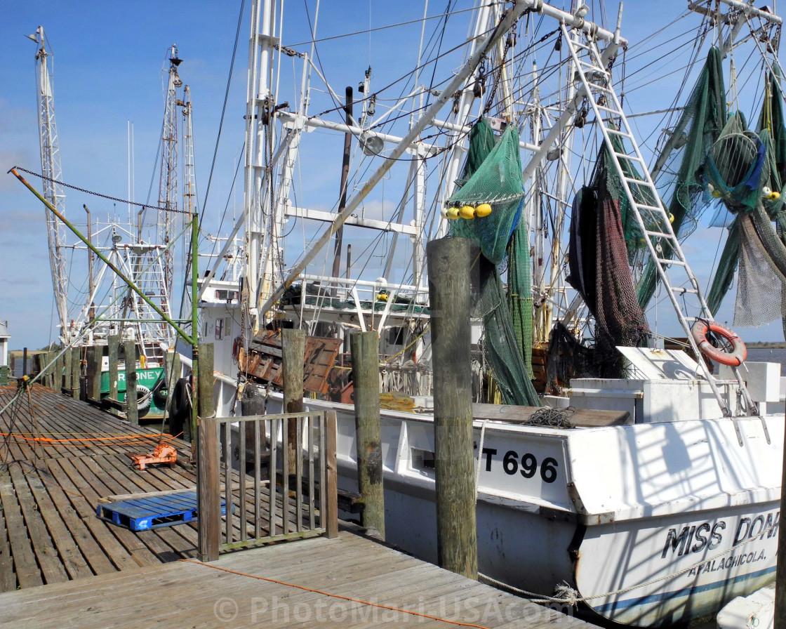 """NO FISH TODAY"" stock image"