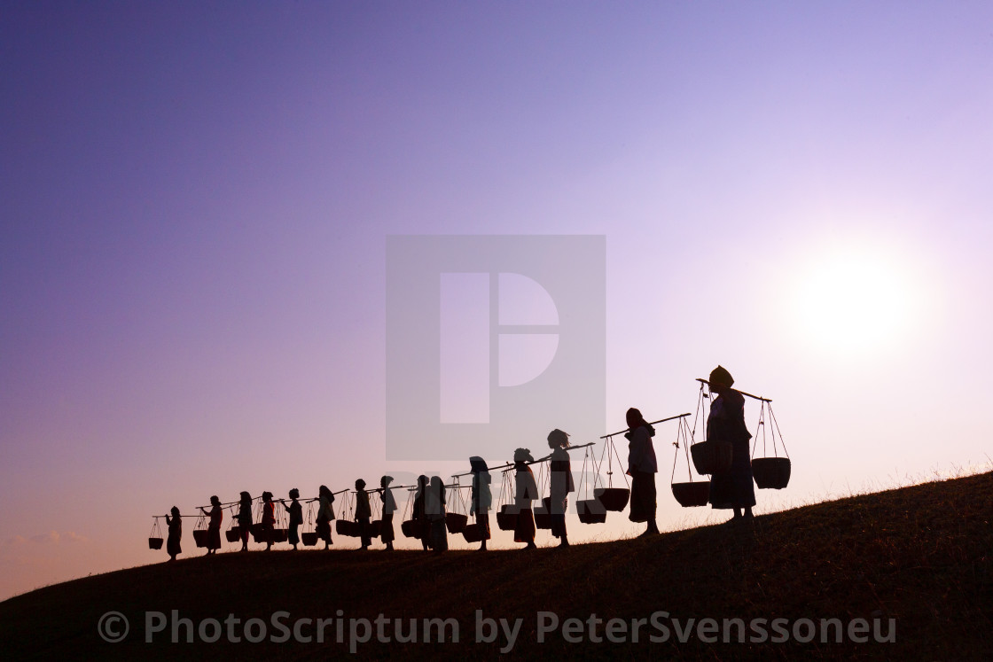 """3032 - Bagan: women returning from market - 1. deep purple"" stock image"