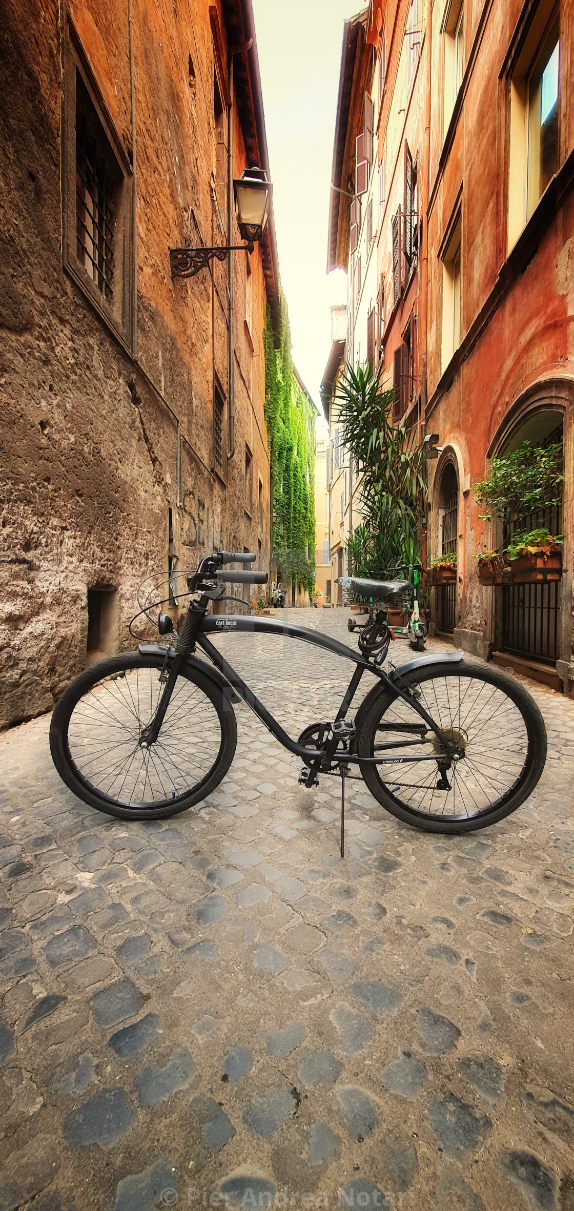 """""""Cafe racer bicycle"""" stock image"""