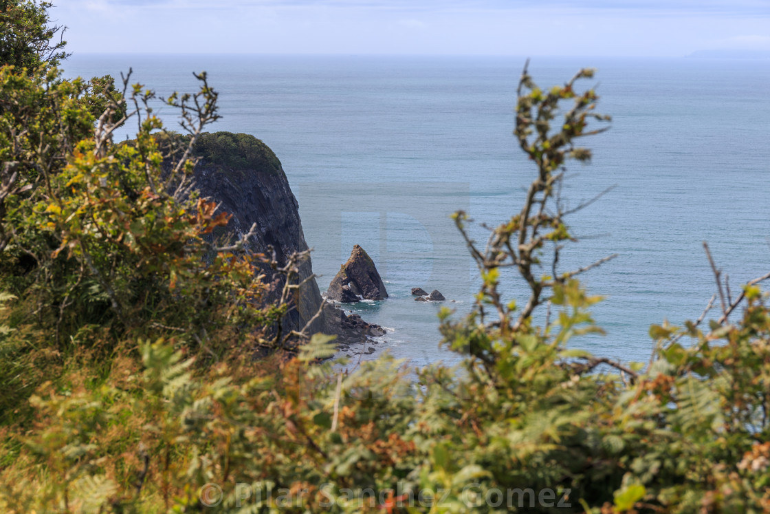 """Blackchurch rock view from coastal path"" stock image"