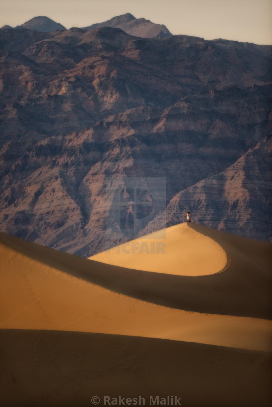 """Mesquite Dune"" stock image"