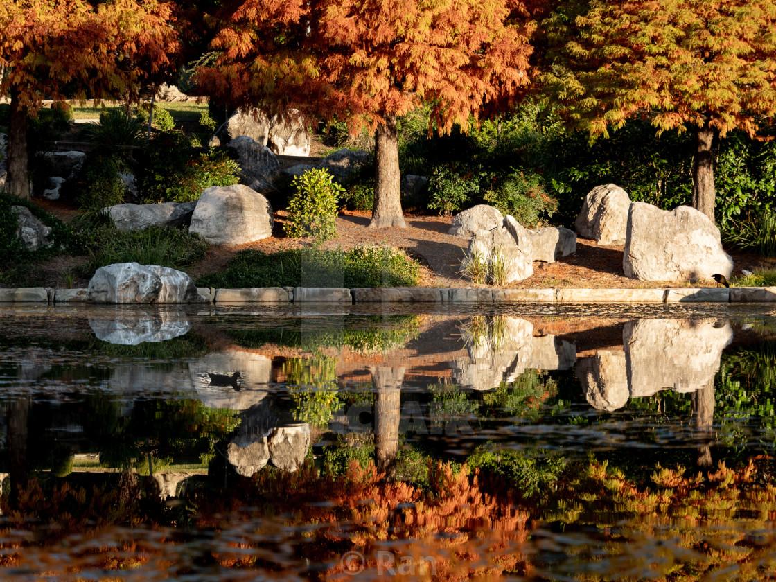 Autumn evening in Nurragingy