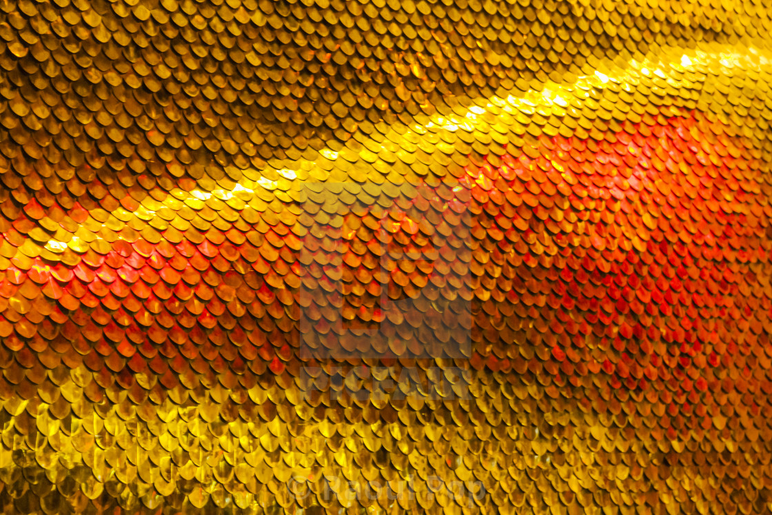 """""""A golden serpent's scales"""" stock image"""