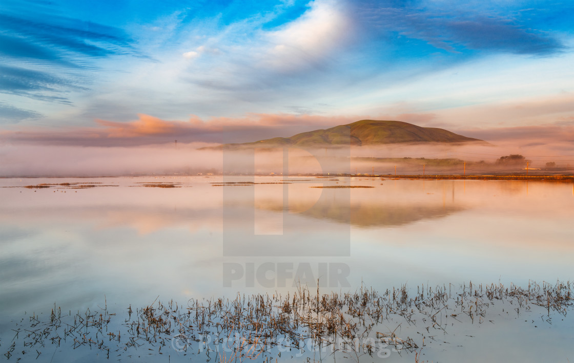 """Dawn Over Sonoma Baylands"" stock image"