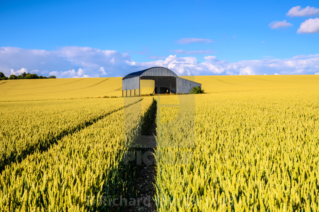 """Dutch Barn"" stock image"