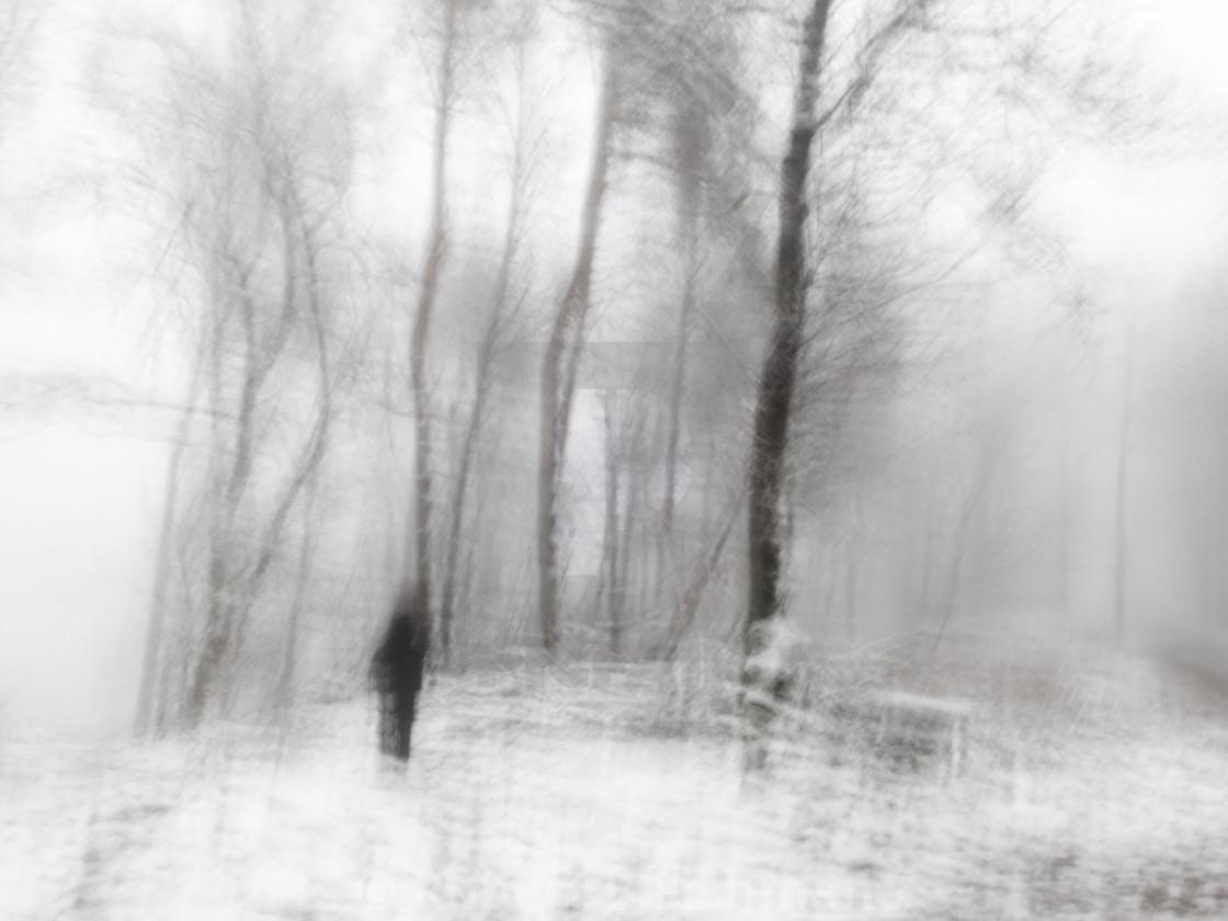 """blurry winter landscape"" stock image"