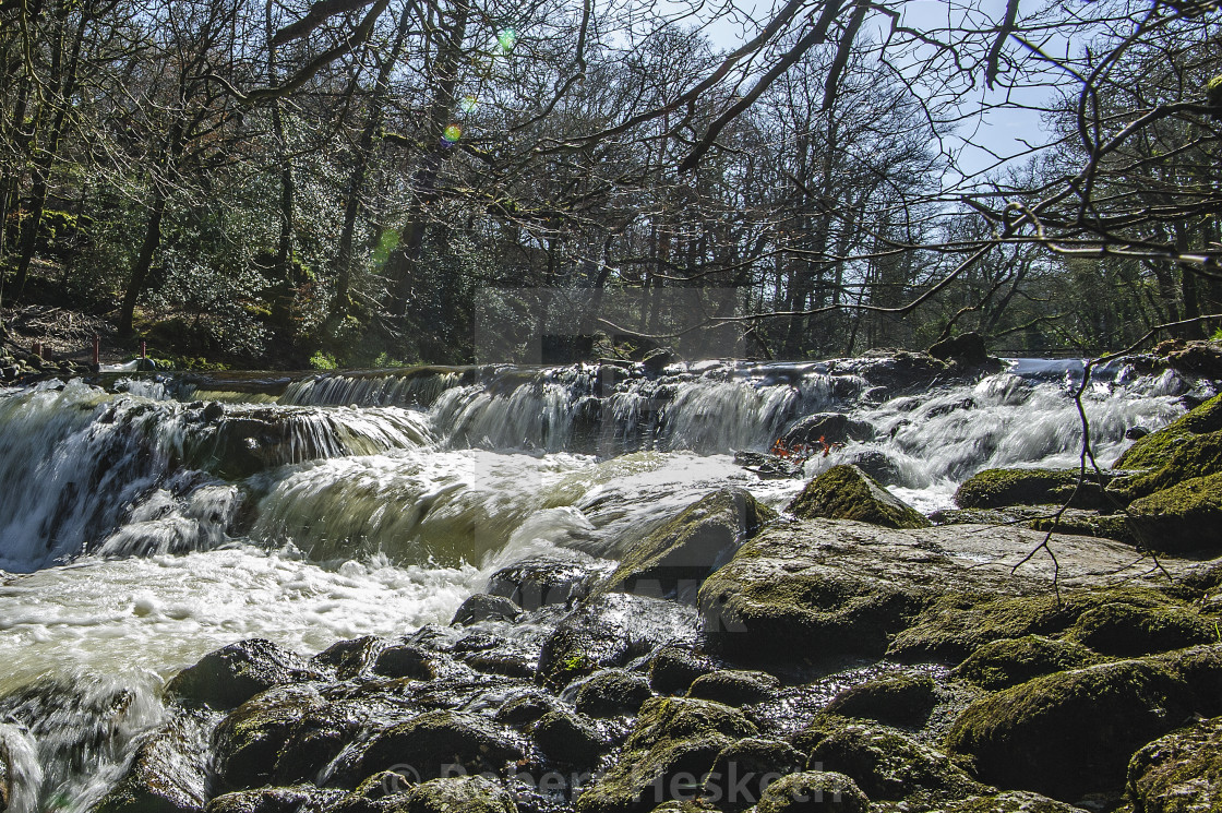 """Fish Ladder on the river Teign, Dartmoor"" stock image"