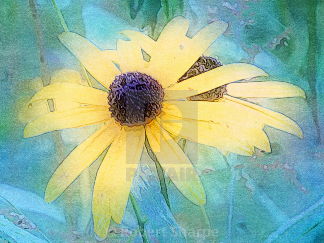 """""""PhotoArt of Yellow Daisy"""" stock image"""