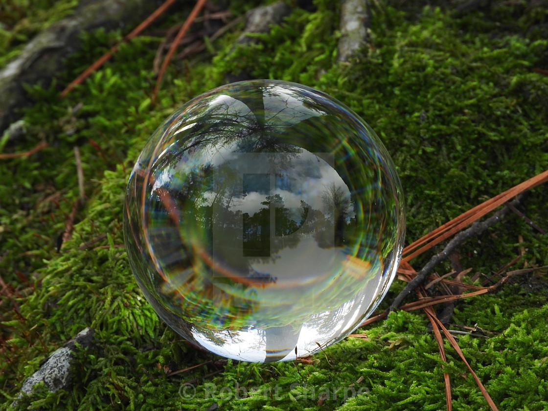 """""""Crystal Ball on Moss"""" stock image"""