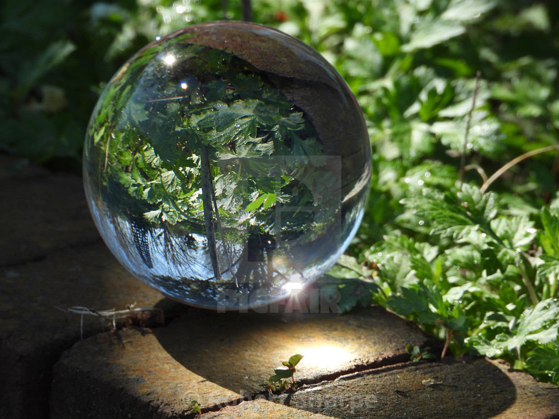 """Sunny Spot-On Crystal Ball"" stock image"