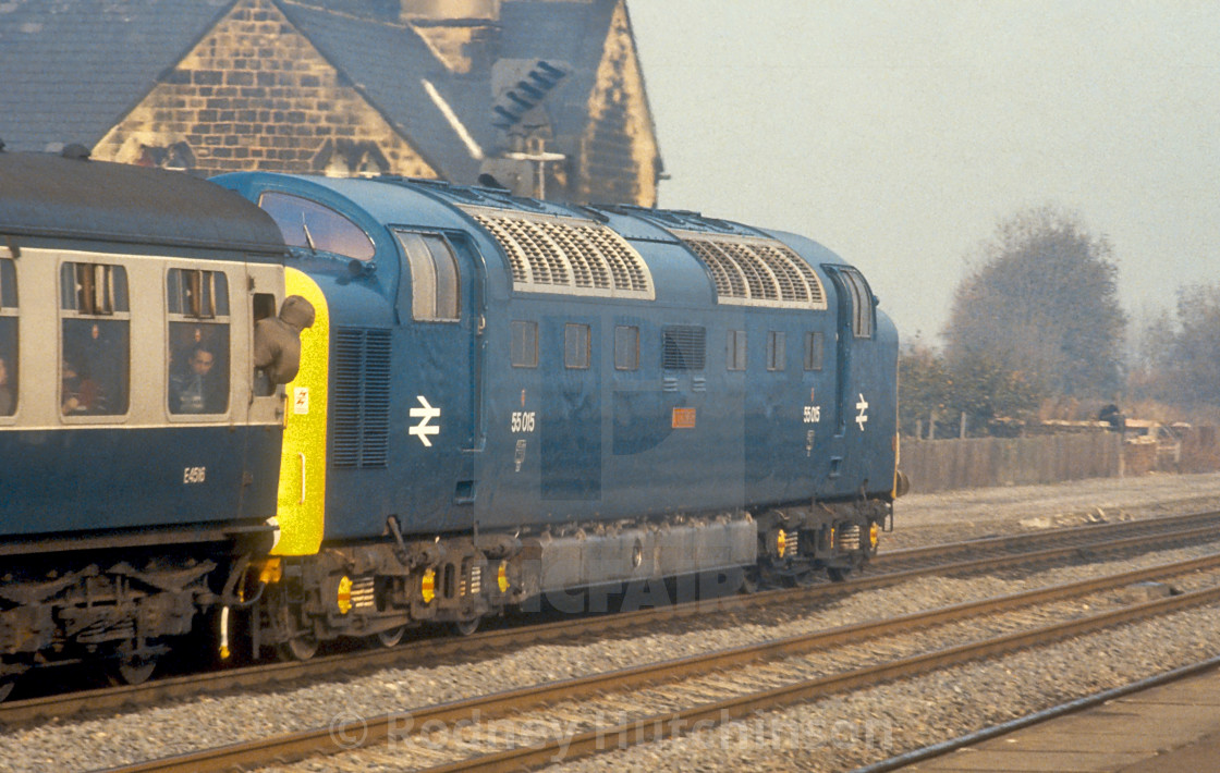 """BR class 55 Deltic 55015"" stock image"