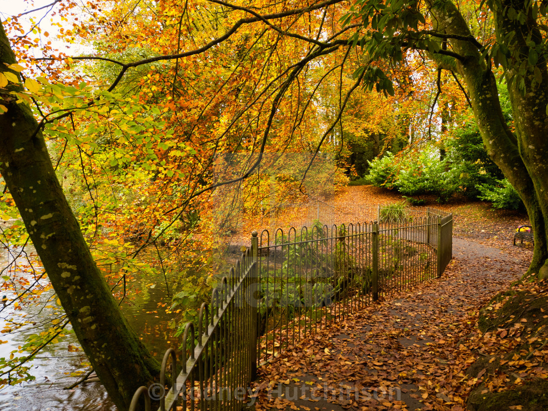 """Autumn in the Park"" stock image"