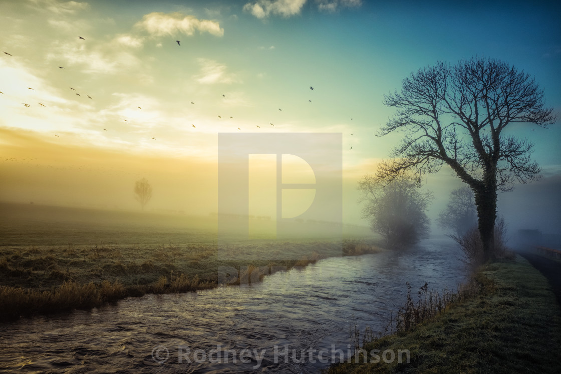 """Ayrshire early winters morning"" stock image"