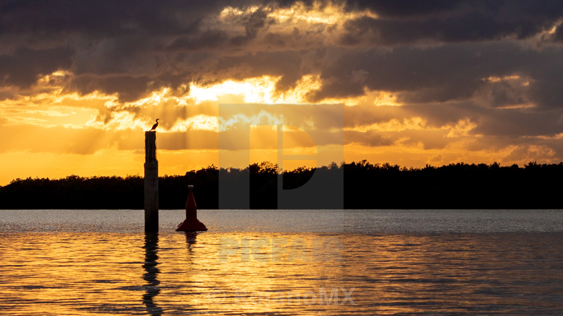 """""""Sunset at the river"""" stock image"""