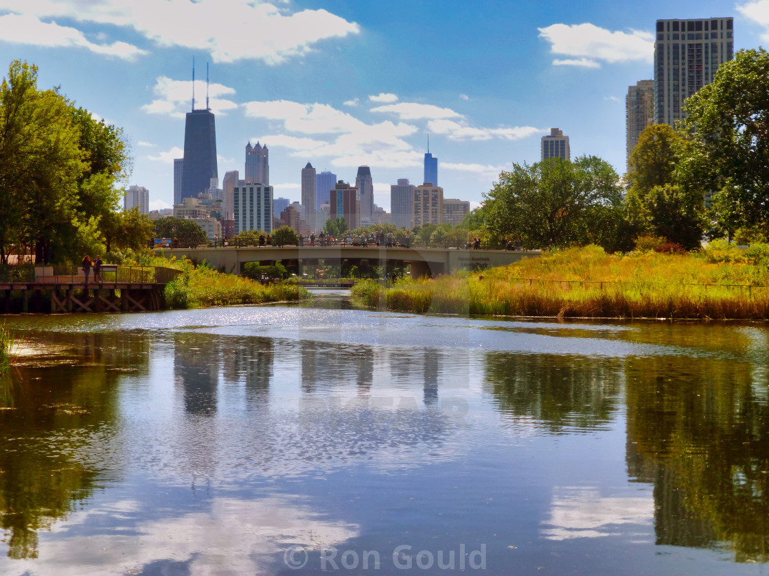 """""""Chicago skyline from Lincoln Park"""" stock image"""