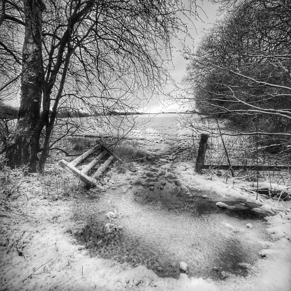 """Broken gate in the ice, mono."" stock image"