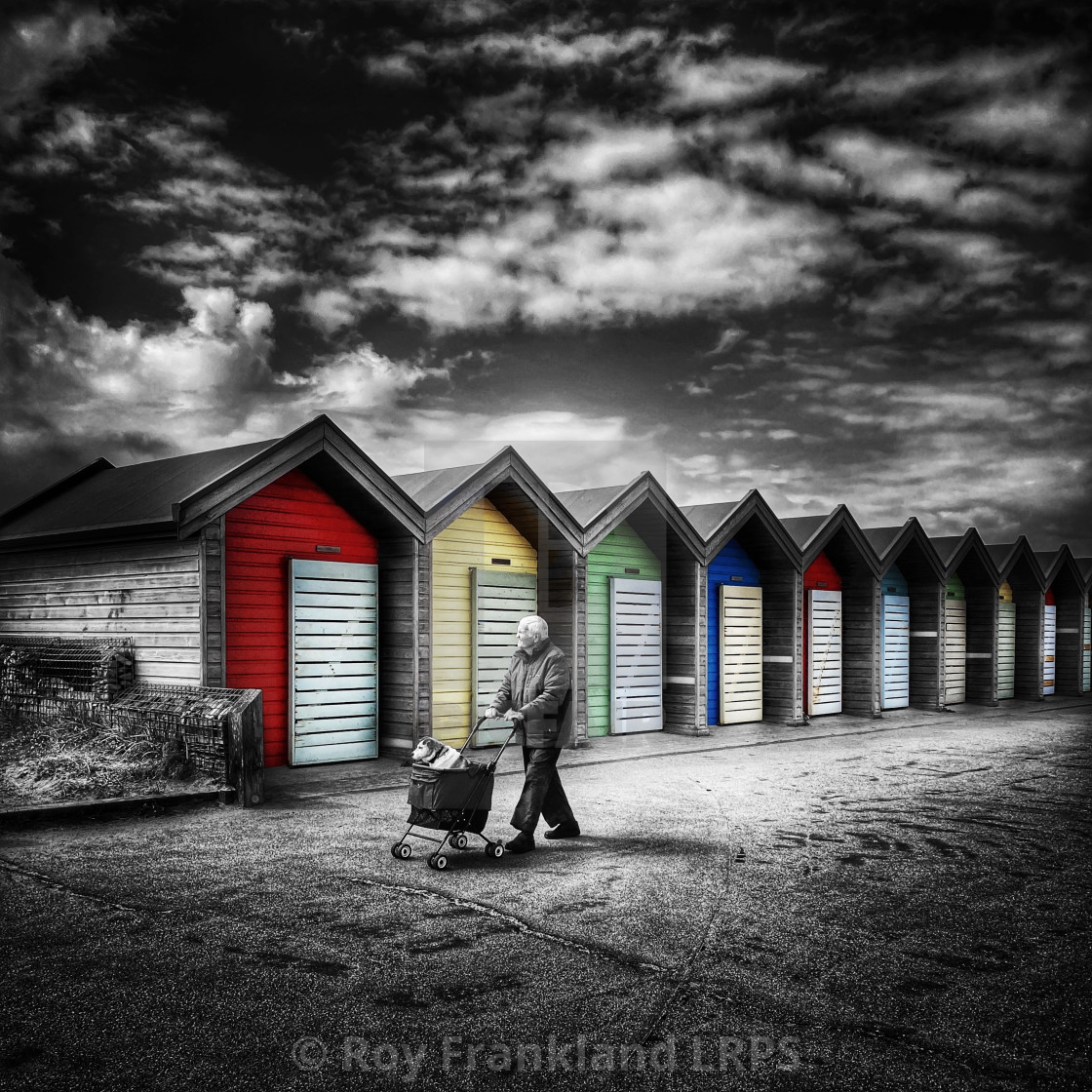 """""""Walking the dog, selective colour"""" stock image"""