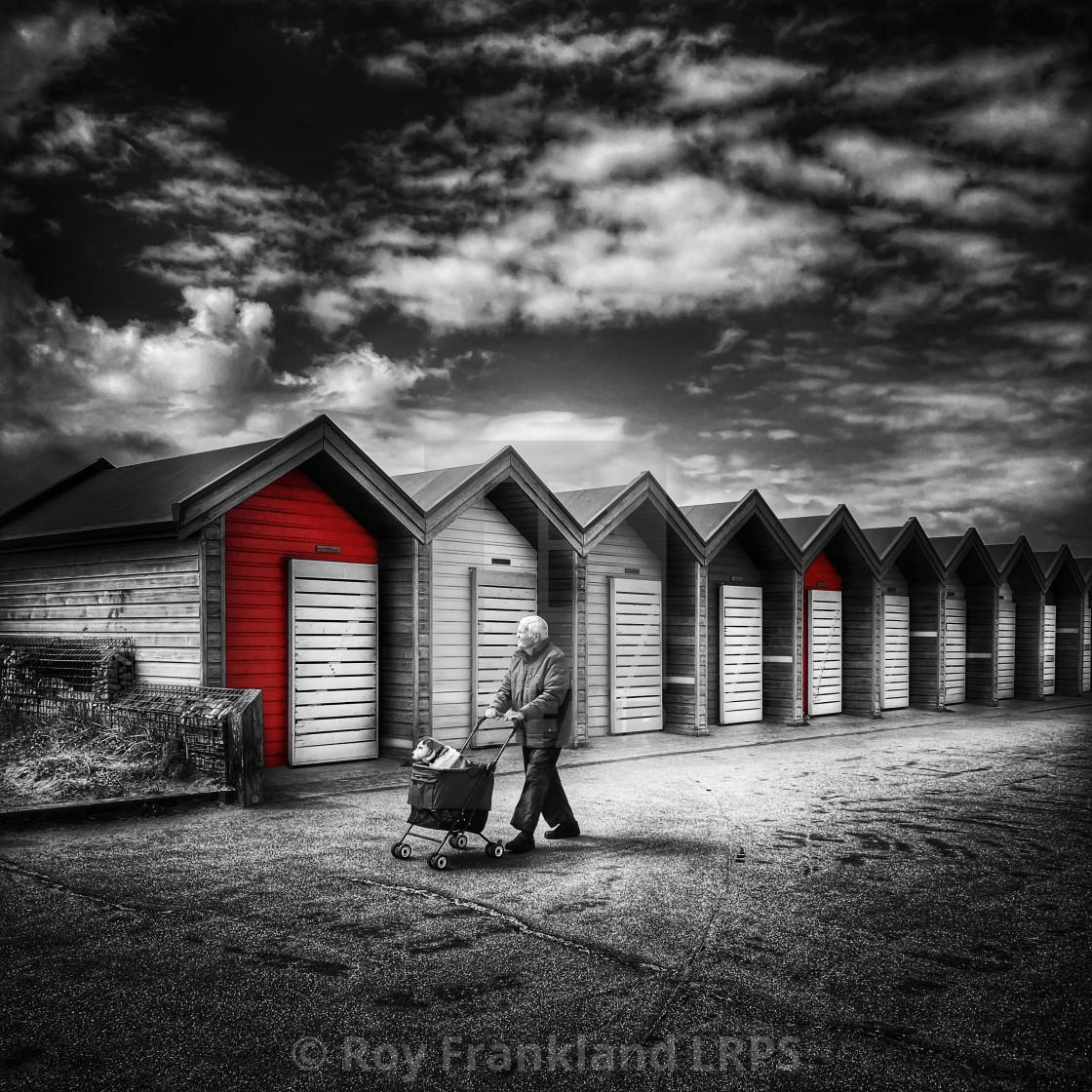 """""""Walking the dog, selective colour 2"""" stock image"""