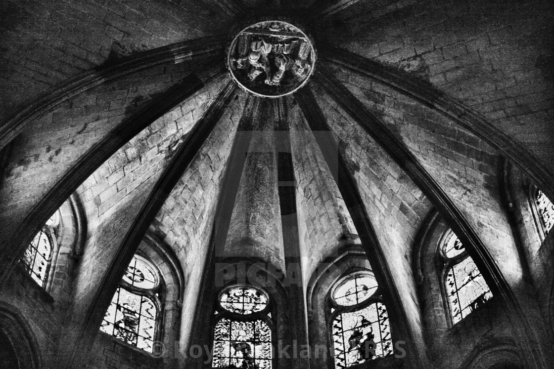 """""""Barcelona cathedral ceiling 2, mono"""" stock image"""